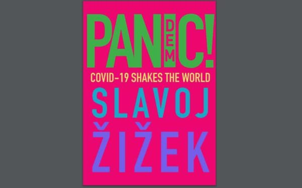 Pandemic Covic-19 Shakes the World
